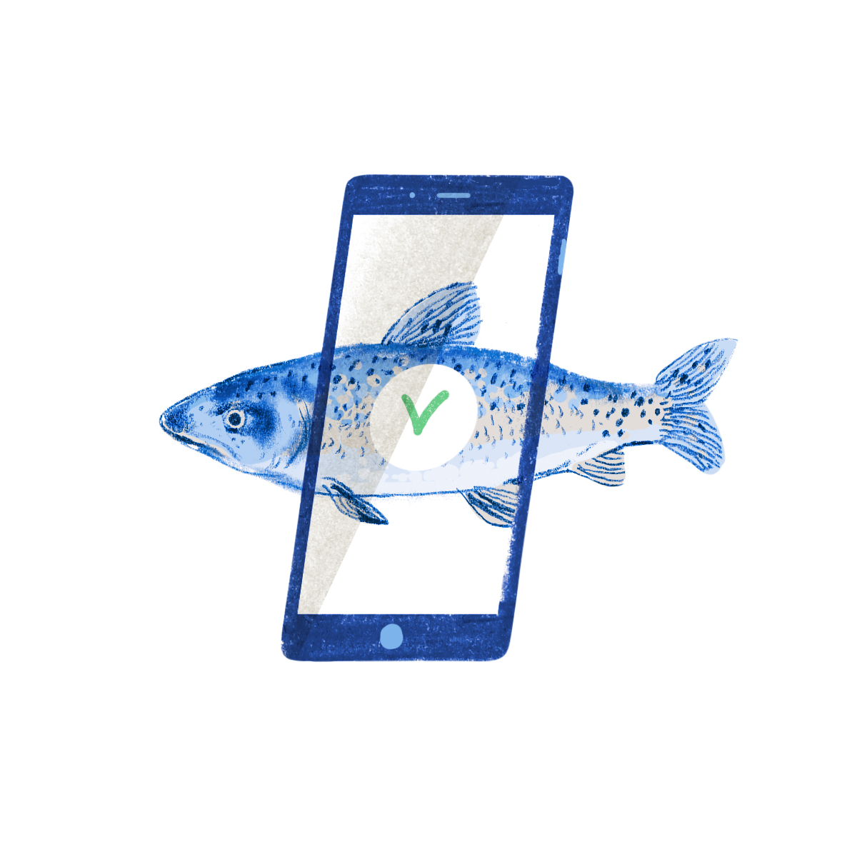 Illustration: fish approved by phone