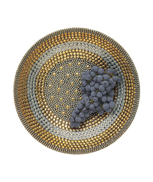 Bedazzled bowl