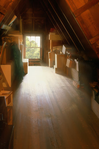 Attics And Basements How To Allergy Proof Your Home