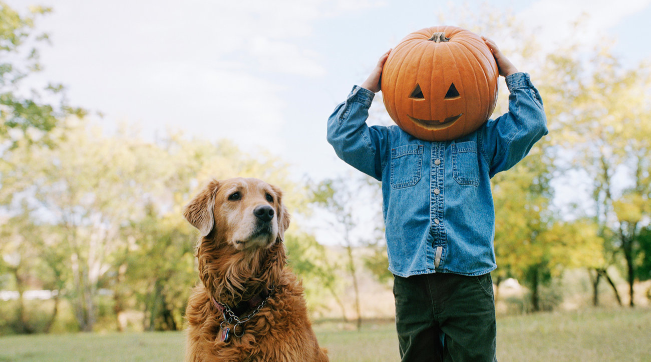 A boy and his dog on Halloween