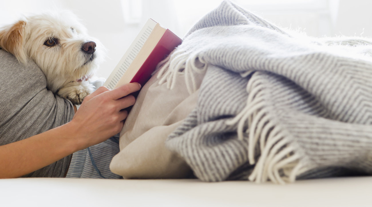 Women reading in bed with dog
