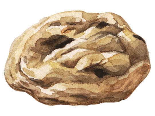 Illustration: thick and moist cookie