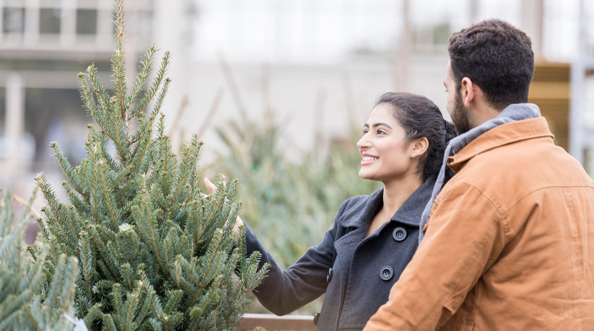 The Worst Time of Year to Buy a Christmas Tree—and When to Buy Instead
