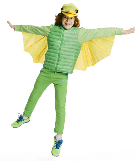 The Costume: Pterodactyl