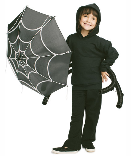 The Costume: Spider's Web