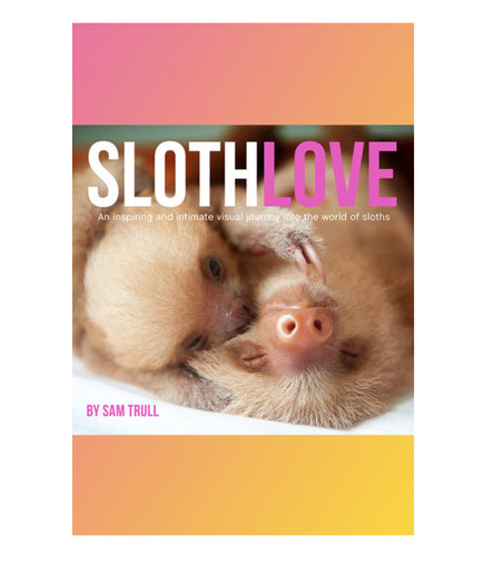 Slothlove, by Sam Trull