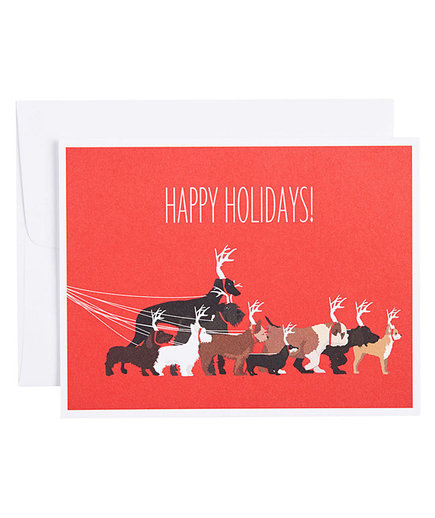 Dogs as Reindeer Holiday Cards