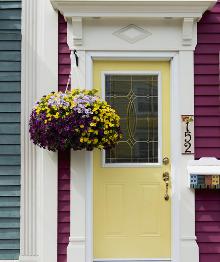 Curb appeal, Yellow front door with hanging plant
