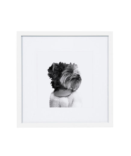 Framed Pet Print (1218GFT)