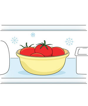 Illustration of a bowl of tomatoes in the refrigerator