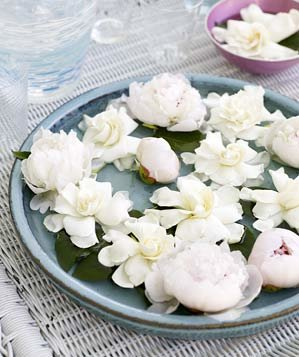 Blooms floating in platter