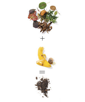 Composting equation