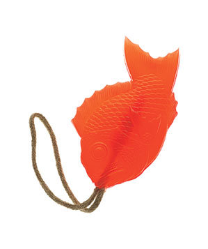Fish soap-on-a-rope