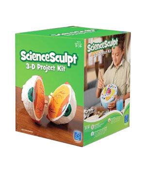 Educational Insights ScienceSculpt 3-D Project