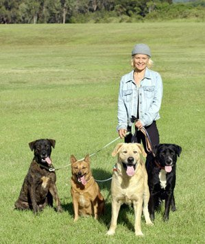Woman walking four dogs in a park