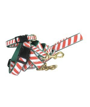Candy Cane Collar and Lead Set