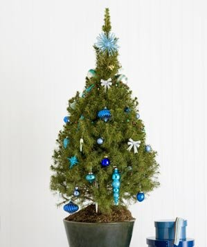 Small Space Tree