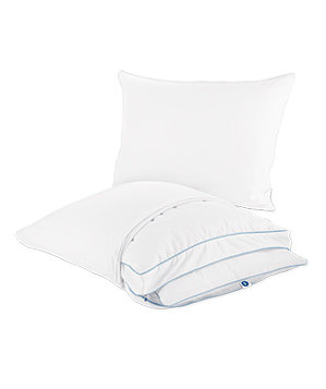 Sleep Number Pillowology True Silver Shell and Core