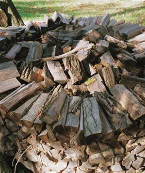 Large stacked wood pile
