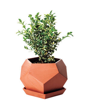 Geo Planter in Small