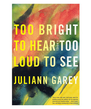 Too Bright to Hear Too Loud to See, by Juliann Garey