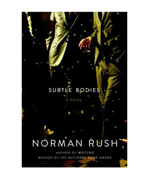 Subtle Bodies, by Norman Rush