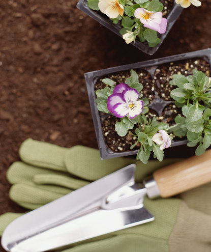 flower-boxes-with-gloves-shovel-mistake-1