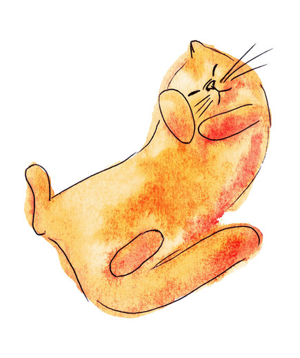 Orange Cat Feline Way illustration