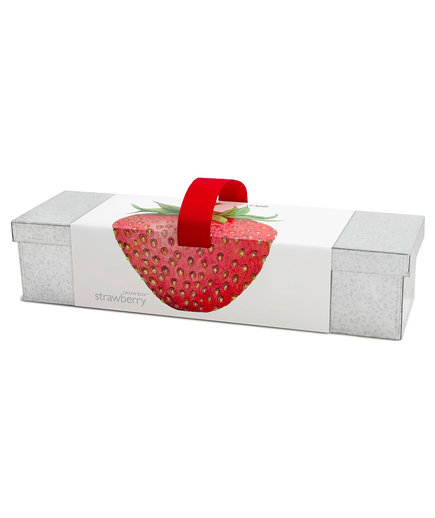 Strawberry Windowsill Box