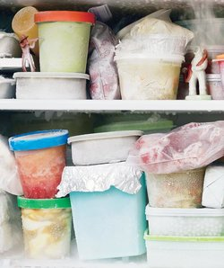 things-cooks-know-freezer-section