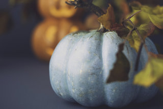 teal-pumpkin-meaning