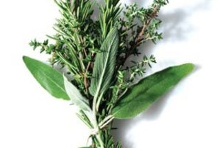 store-use-fresh-herbs