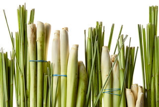 lemongrass-recipes
