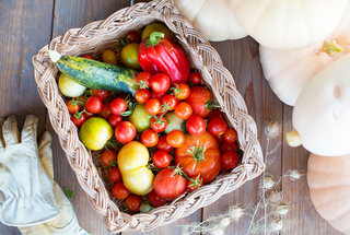 summer-vegetables-fruits