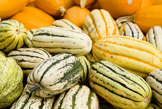 common-types-winter-squash