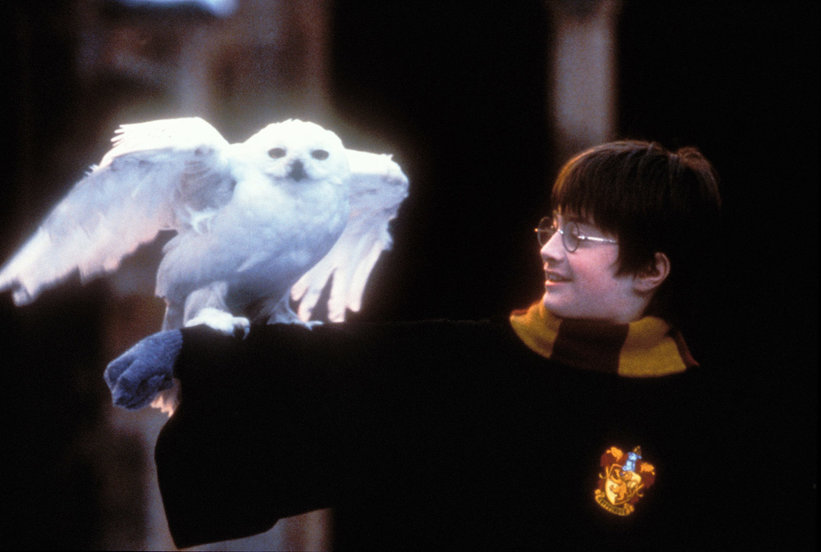 Never Got Your Hogwarts Letter? This New Harry Potter Game Will Make Up for It