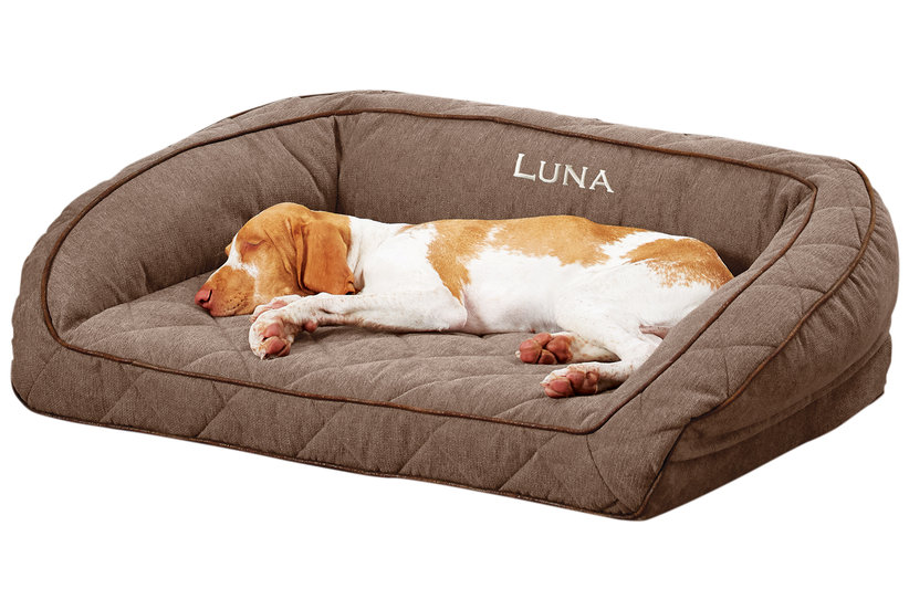 6 Expert-Approved Beds Your Dog Will Love