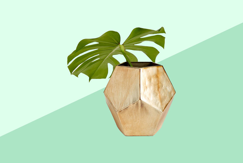 You Can Shop Sustainable Home Decor From Nordstrom in This Under-the-Radar Section
