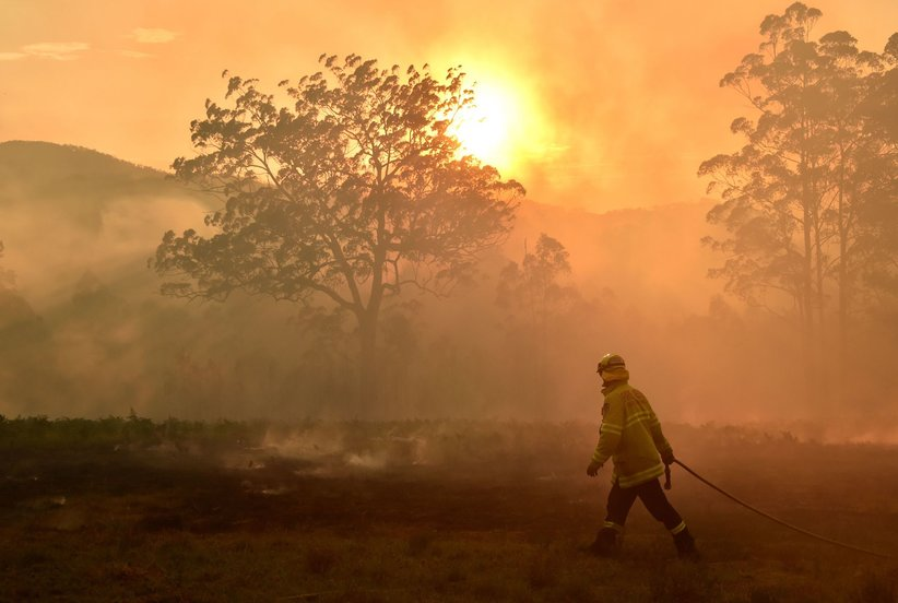 How You Can Help Those Affected By the Australia Fires