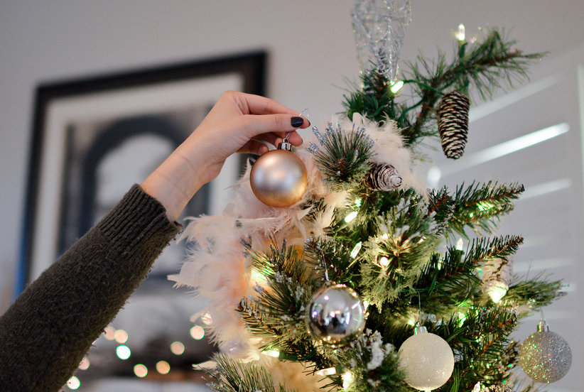 My Christmas Tree Was Infested With Bugs—and It Was Still a Great Holiday