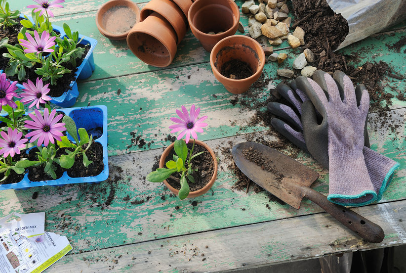 The Best Gardening Advice You'll Ever Receive