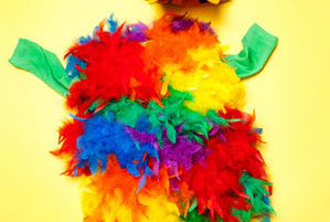 how to make parrot clothes