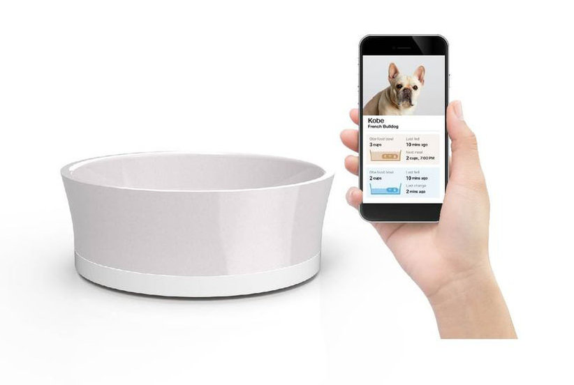 Finally, a Smart Dog Food Bowl That's Beautiful, Too