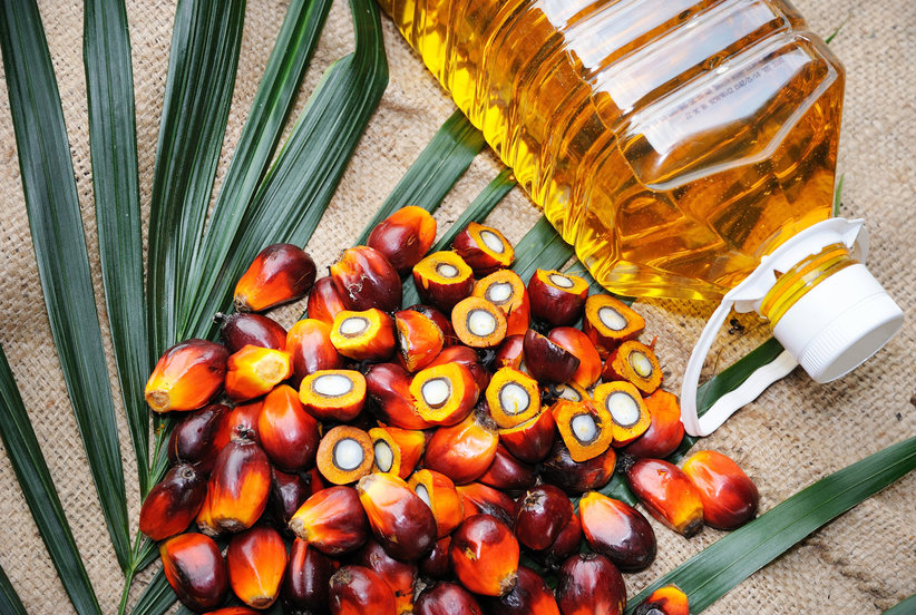 Everything You Should Know About Palm Oil and Why It Might Be Bad