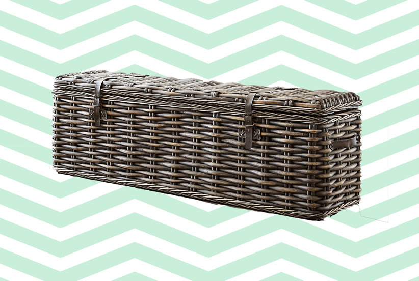 Wait Till You Check Out These Trunks—The College Staple Is Actually Cool Now