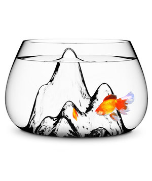 fishscape-fishbowl