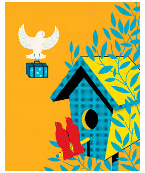 bird-house-guests