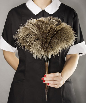 housekeeper-feather-duster