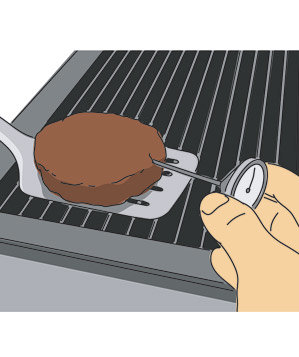 thermometer-meat