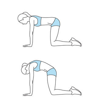 warmup catcamel  get stronger abs in 15 minutes  real